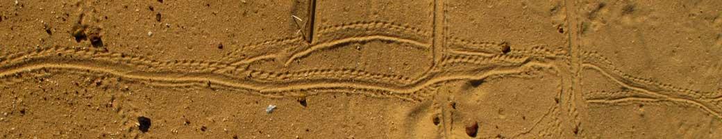 sand-tracks-1040-200